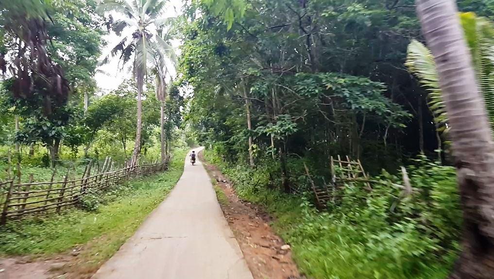 carabao-island.jpg